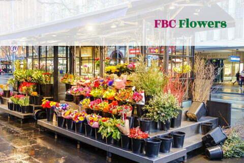 FBC Flowers